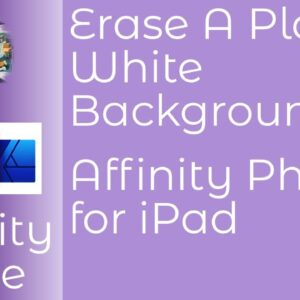 Erase A Plain White Background Using Affinity Photo for iPad